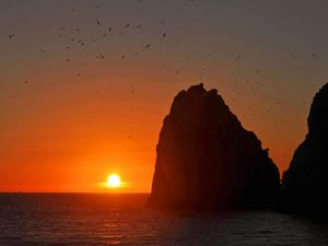 Sunset Cruise in Cabo San Lucas by Guerita Sportfishing